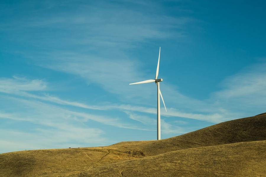 Carbon neutralization