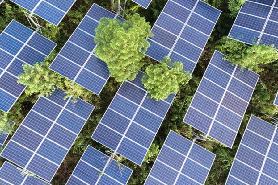 Daqo New Energy Announces Three-Year High-Purity P