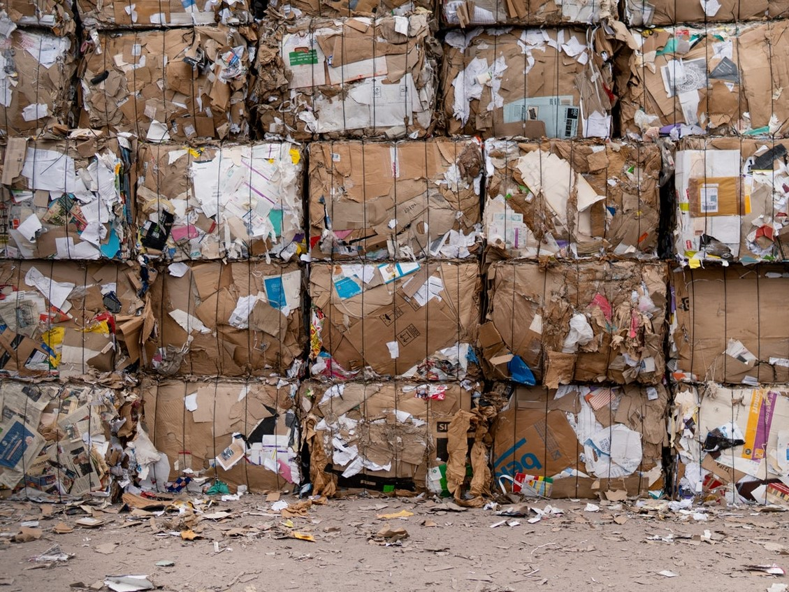 Trash to be Terminated? Waste Sorting Solved with AI-Powered Robots