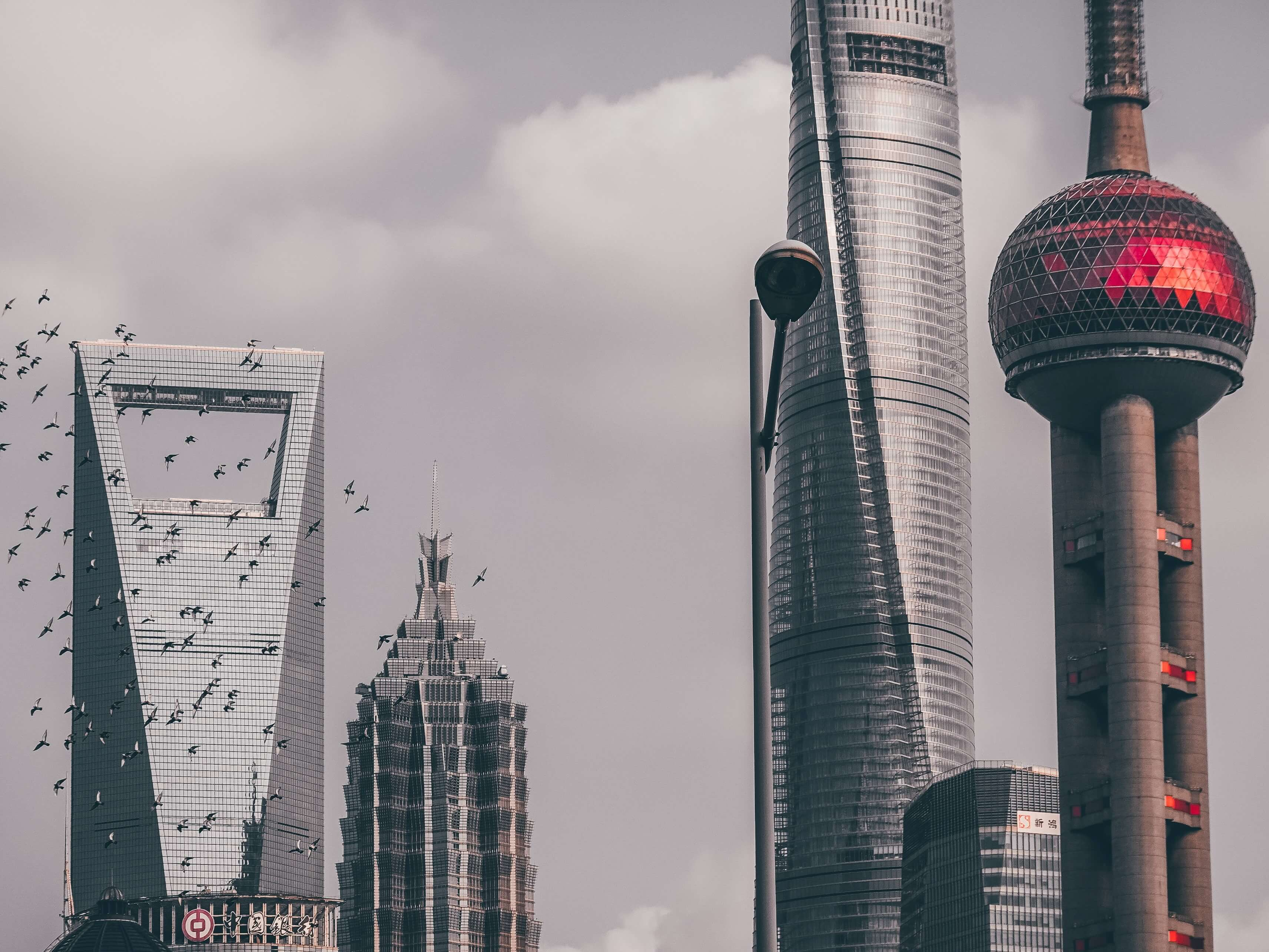 We see the next line-up of automotive and mobility giants in Shanghai. Image Credit: Kin Li/Unsplash