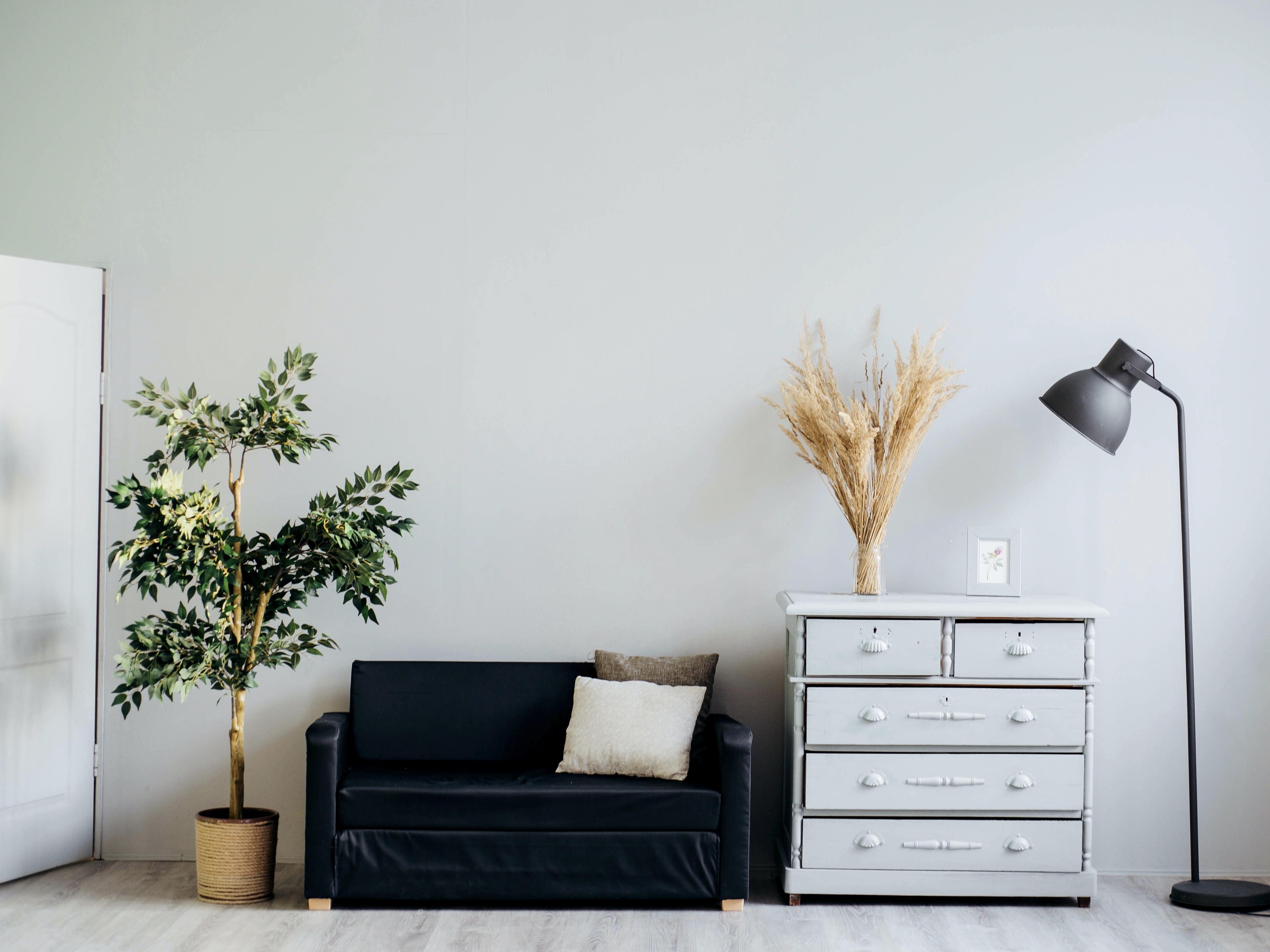 Cozy room. Image Credit: Alexandra Gorn/Unsplash
